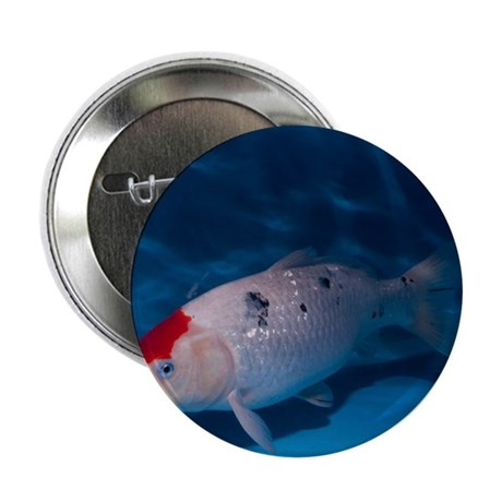 Sanke koi carp pool button 100 pack by sciencephotos for Koi carp pool design