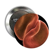 Red blood cells - 2.25' Button (100 pack)