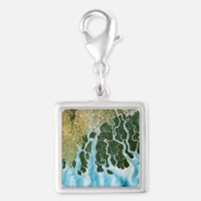 Ganges River delta, India - Silver Square Charm
