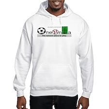 Oneonta New York Souvenir Hoodie Sweatshirt