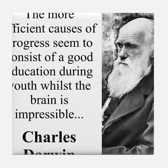 The More Efficient Causes - Charles Darwin Tile Co