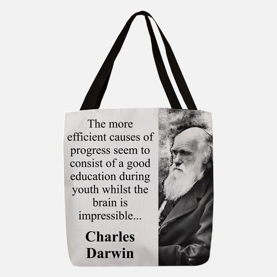 The More Efficient Causes - Charles Darwin Polyest