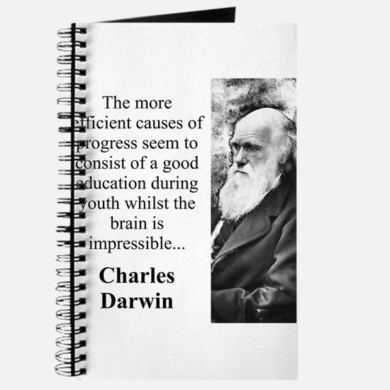 The More Efficient Causes - Charles Darwin Journal