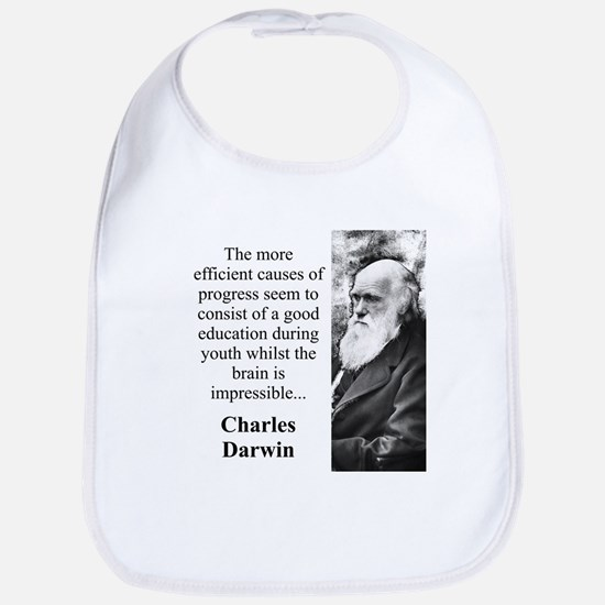 The More Efficient Causes - Charles Darwin Cotton