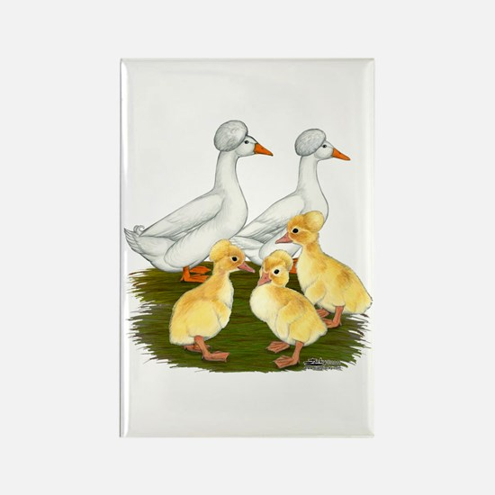 Crested Duck Family Rectangle Magnet