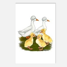 Crested Duck Family Postcards (Package of 8)