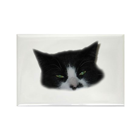 Wicked Eyes Rectangle Magnet (100 pack)