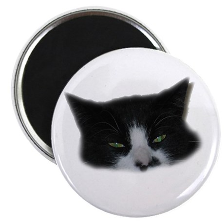 "Wicked Eyes 2.25"" Magnet (10 pack)"