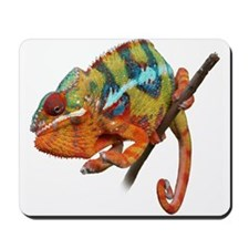 Panther Chameleon on stick Mousepad