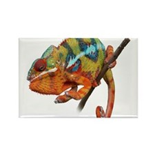 Panther Chameleon on stick Rectangle Magnet