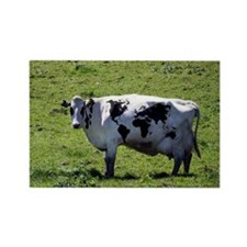 World Cow Rectangle Magnet (10 pack)