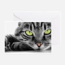 grey cat green eyes Greeting Card