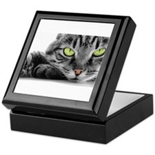 grey cat green eyes Keepsake Box