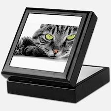 grey cat green eyes Keepsake Box