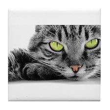 grey cat green eyes Tile Coaster