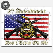 2nd Amendment Puzzle