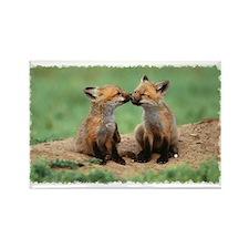 """Fox cubs kiss"" Rectangle Magnet"