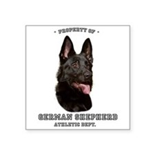 German Shepherd Athletics by Megan Noble Square St