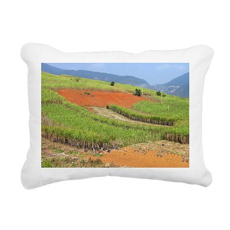 Sugar cane harvest - Rectangular Canvas Pillow