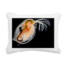 Water flea - Rectangular Canvas Pillow