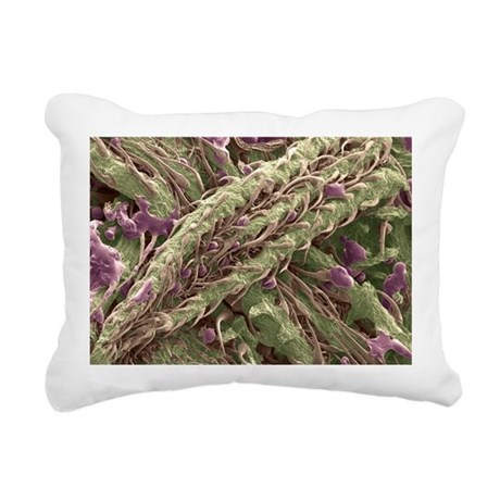 Cannabis plant, SEM - Rectangular Canvas Pillow