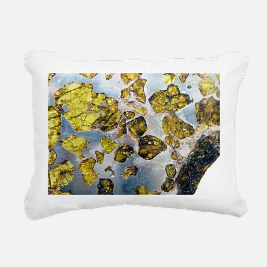 Fukeng meteorite - Rectangular Canvas Pillow