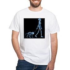 Skeleton walking a marmoset, X-ray - Shirt