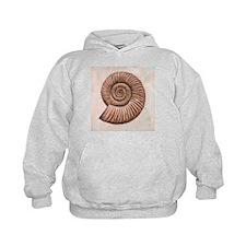 Perisphinctes ammonite, artwork - Hoodie