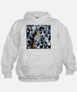 Polarised LM of thin section of gneiss - Hoodie