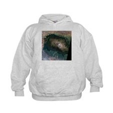Snow on Mount Kilimanjaro, 2000 - Hoodie