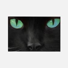 Black Cat with Aqua Eyes Magnet