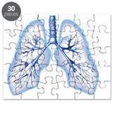 Anatomical lungs Puzzles