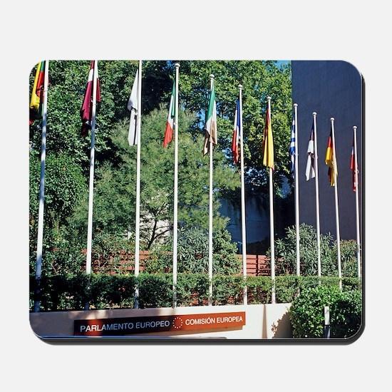 European parliament building - Mousepad