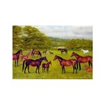 MARES & FOALS Rectangle Magnet (10 pack)