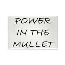 Power in the Mullet Rectangle Magnet
