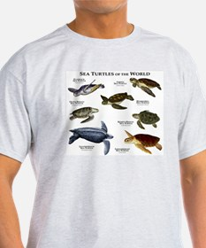 Sea Turtles of the World T-Shirt