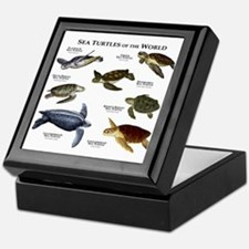 Sea Turtles of the World Keepsake Box