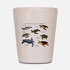 Sea Turtles of the World Shot Glass