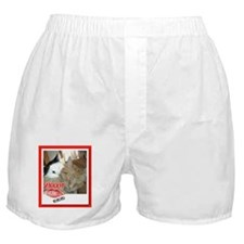 Valentine Orange Tabby Cat Boxer Shorts