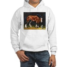 Clydesdale Horse and Cat Hoodie