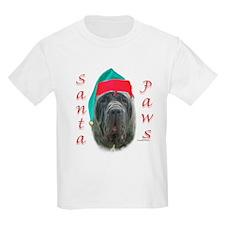 Santa Paws Neo Kids T-Shirt