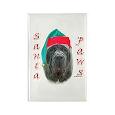 Santa Paws Neo Rectangle Magnet