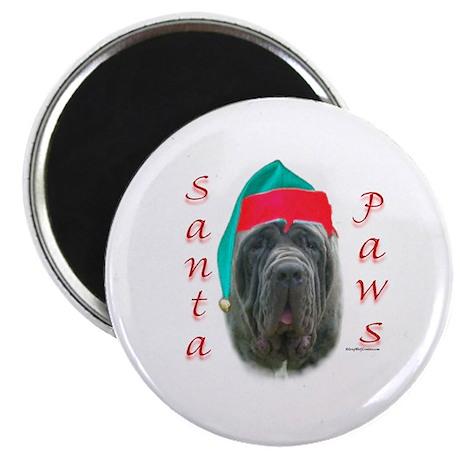 Santa Paws Neo Magnet