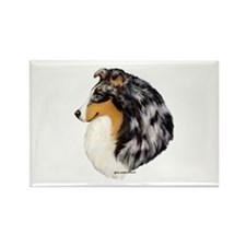 Blue Merle Shetland Sheepdog Rectangle Magnet