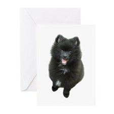 Adorable Black Pomeranian Puppy Dog Greeting Cards