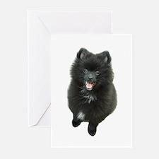 Adorable Black Pomeranian Puppy Dog Greeting Cards