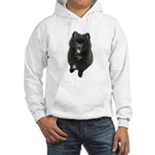 Adorable Black Pomeranian Puppy Dog Hoodie