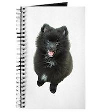 Adorable Black Pomeranian Puppy Dog Journal