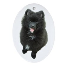Adorable Black Pomeranian Puppy Dog Ornament (Oval