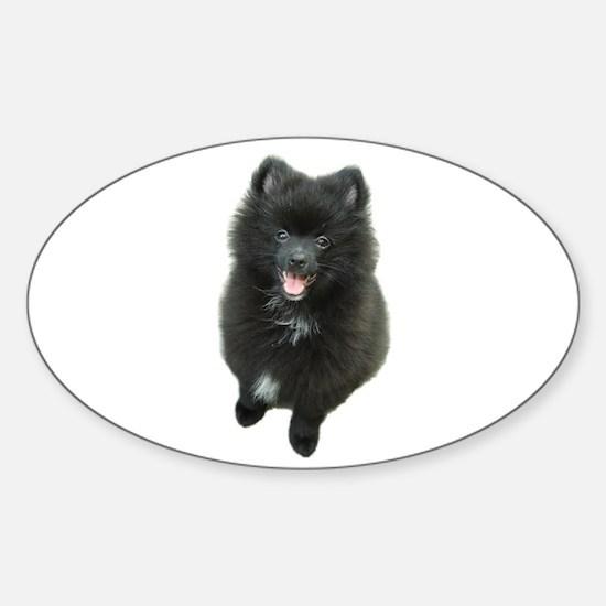 Adorable Black Pomeranian Puppy Dog Sticker (Oval)